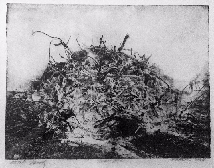 Pat Bacon,  Burn Pile,  Photogravur, polymer, 260.