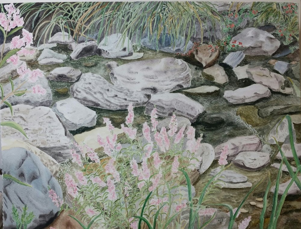 Rocky Stream wth Pink Flowers by Wendy Forrest