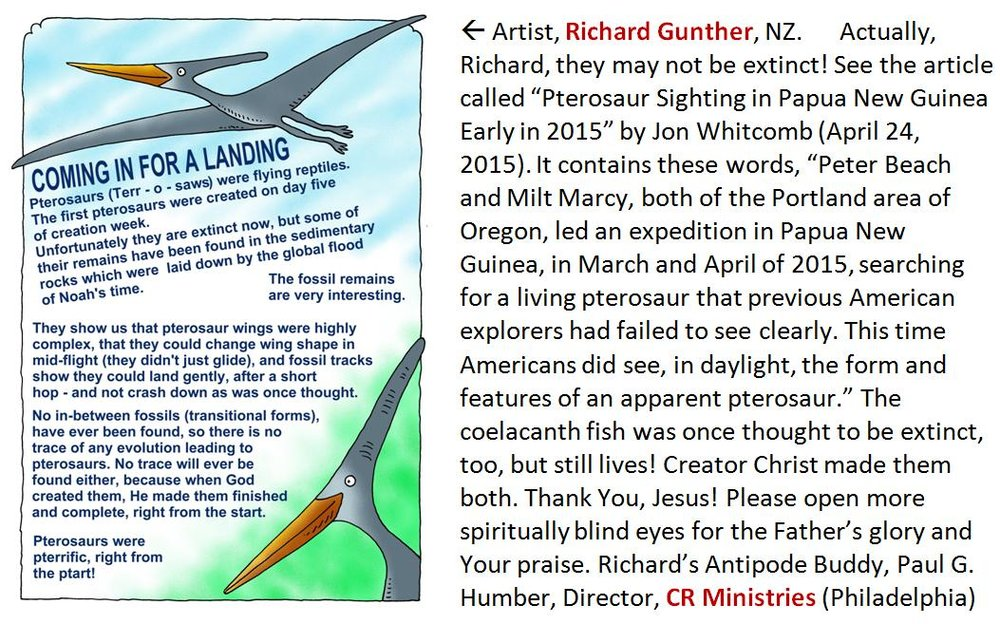For the link, try this, http://www.livingpterosaur.com/blog/2015/04/24/pterosaur-sighting-in-papua-new-guinea-early-in-2015/