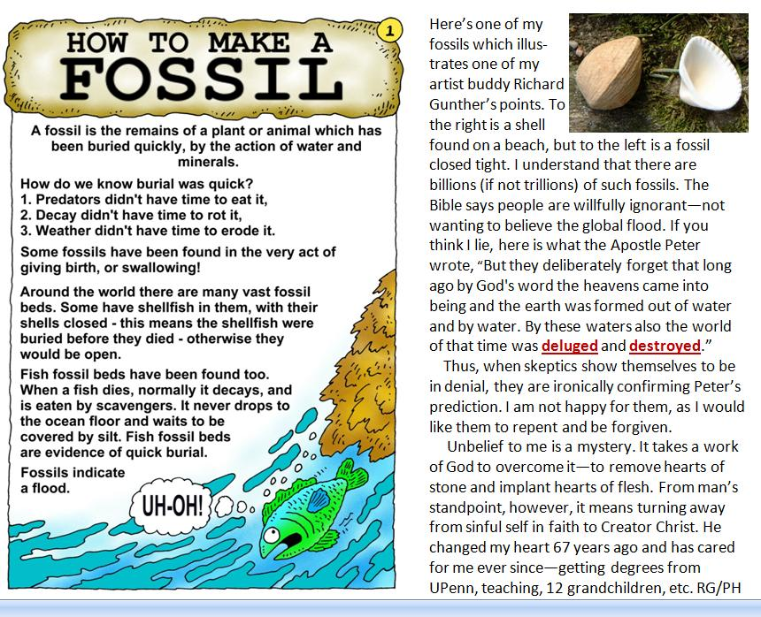 Many fossils resulted from Noah's flood, but many refuse to believe God's revelation in the Bible PLUS the massive scientific evidence that confirms it.