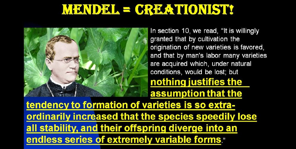 Many evolutionists say Gregor Mendel, the Founder of Genetic Science, was an evolutionist, but they are very wrong. In this video, I quote from Mendel himself. Not only was he a creationist, but he was/is a true Christian. I even quote from two of his sermons as well as from his seminal scientific paper. Click the link below.   https://www.youtube.com/watch?v=qlU6mTH4Tb0