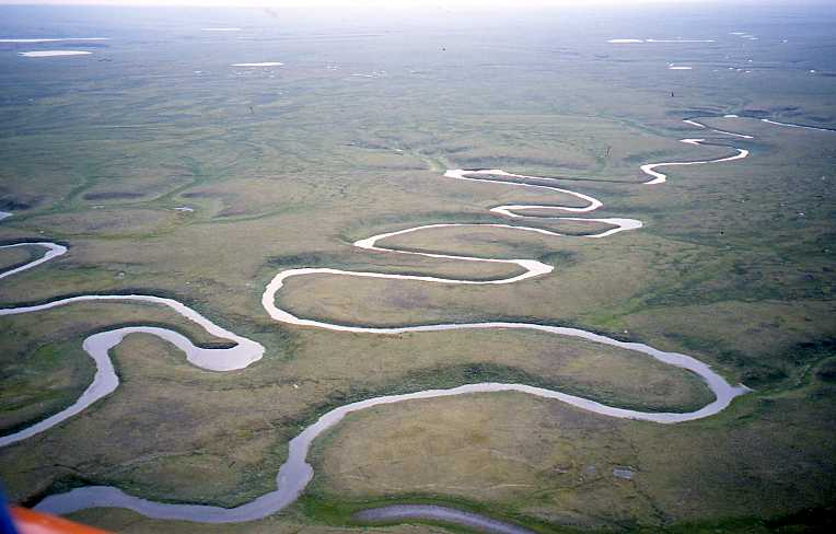 meandering-river-on-the-yamal-tundra.jpg