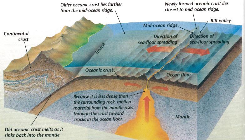 Unit 3 earth 39 s interior science at excel for Ocean floor zones diagram
