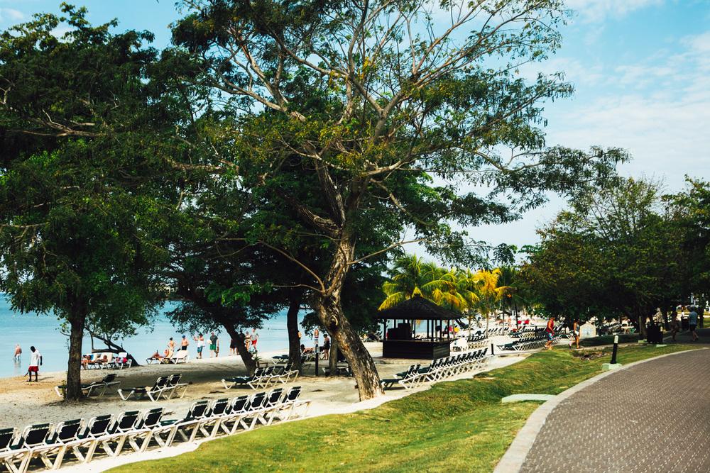 Jamaica-67.jpg