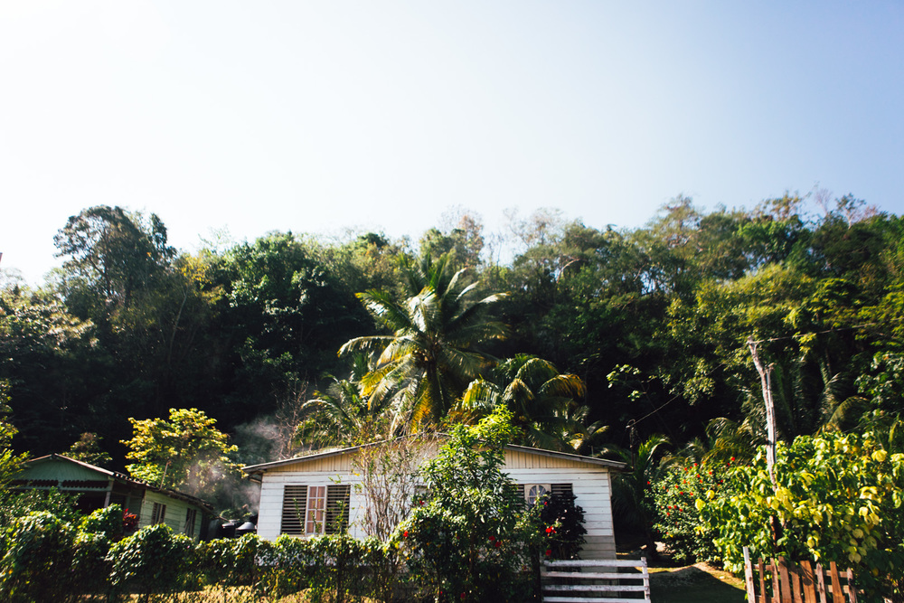 Jamaica-73.jpg