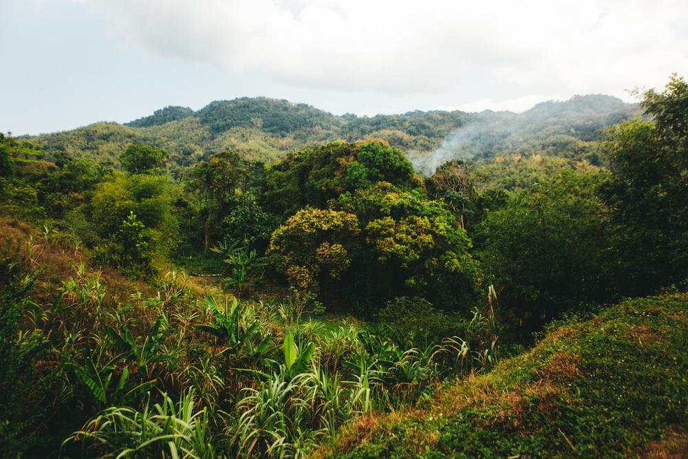 Jamaica-78.jpg