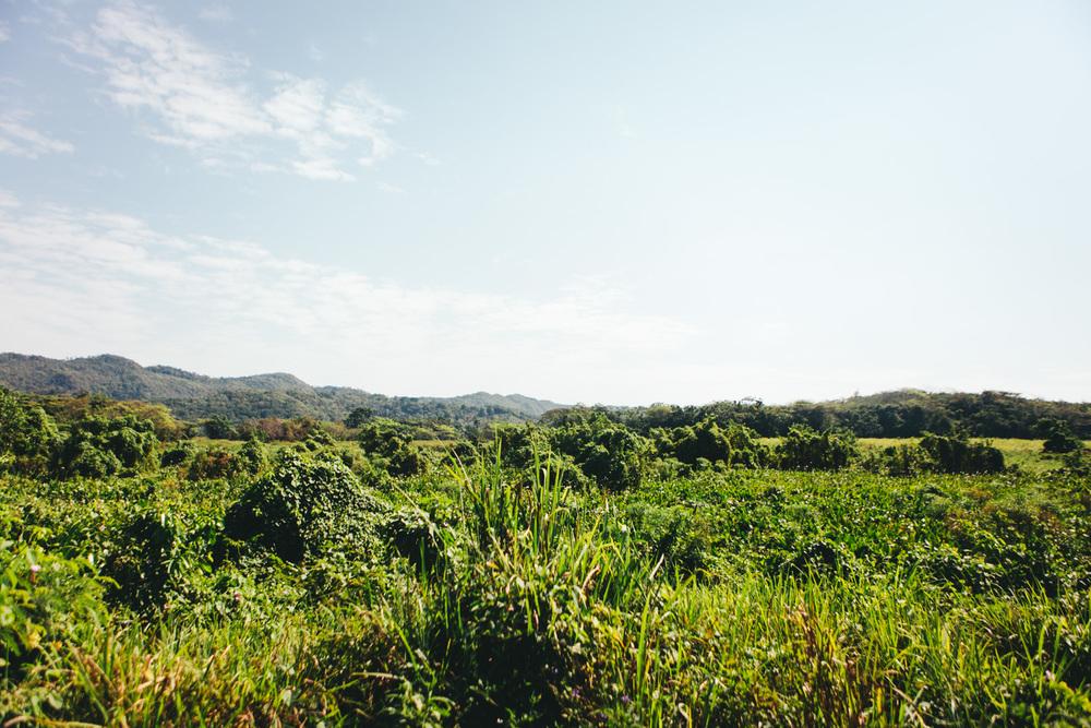 Jamaica-72.jpg