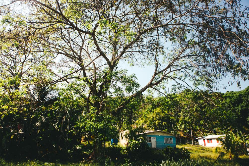 Jamaica-76.jpg