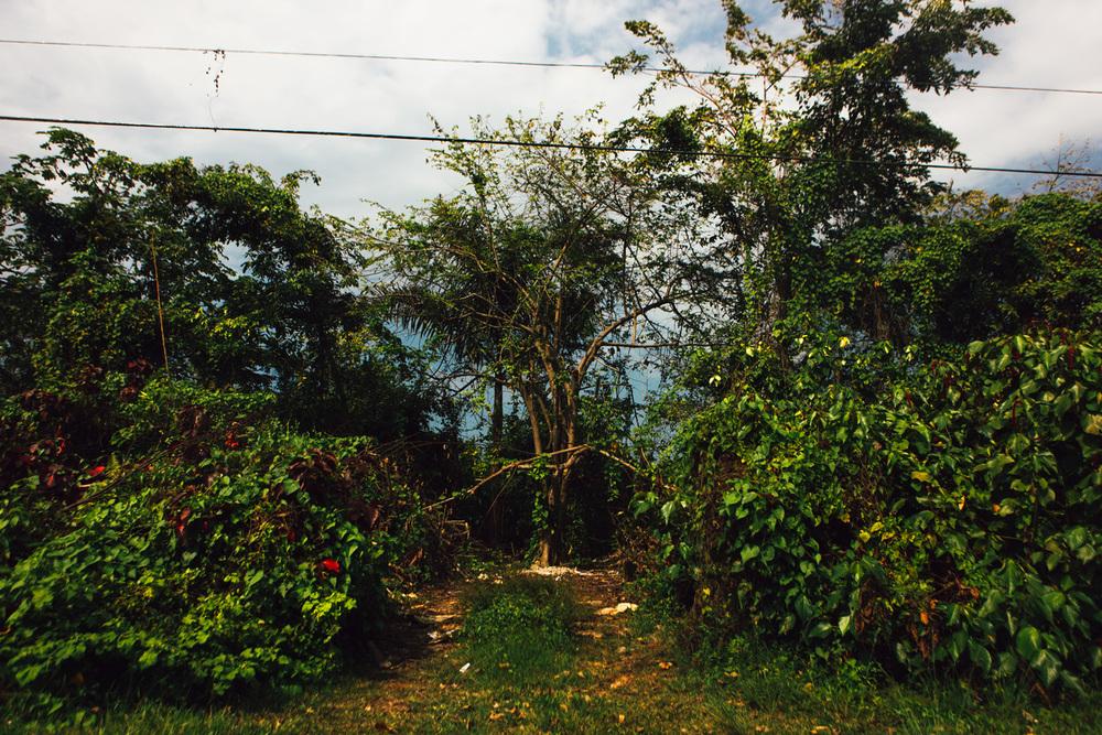 Jamaica-86.jpg