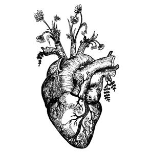 website_heart.jpg