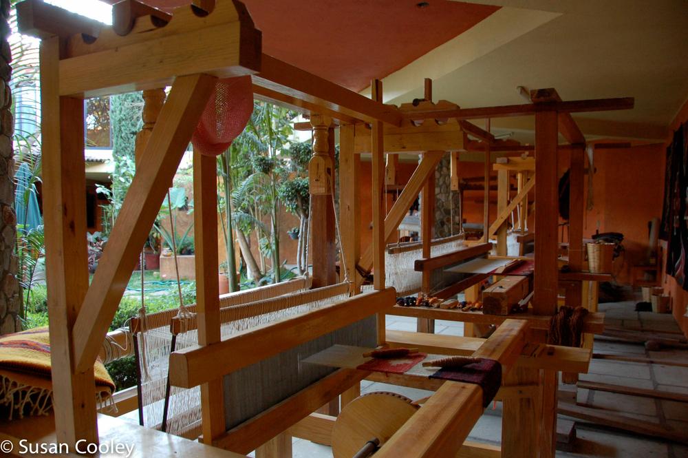 2008.01_OaxacaSCK297.jpg
