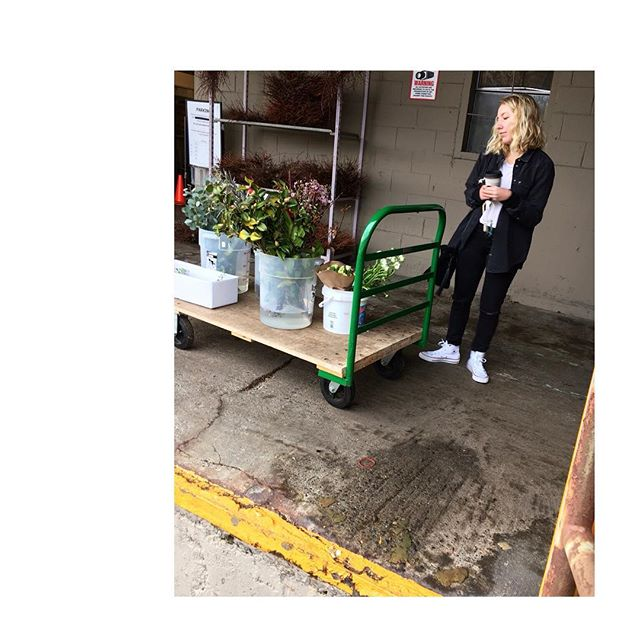 Krista checkin' out the inventory from the @seattlewholesalegrowersmarket this morning 🌿🥀