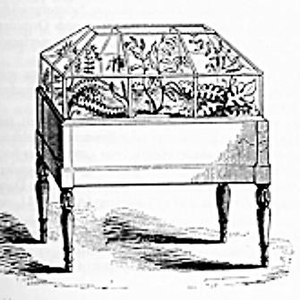 An early Wardian Case