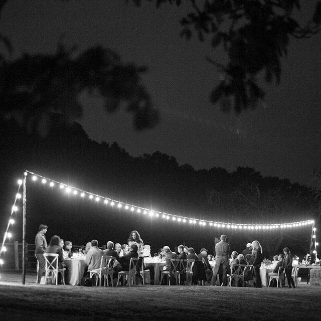 Good Night 🌙 // A single strand of lights over a long table, good food, good wine, and a beautiful setting (I think this is how we should eat dinner more often, don't you agree?) Thank you to @centralcoasttentandparty for always making it look so easy 😉 and to @mikelarson for making it look so good! ✨ #dinnerparty