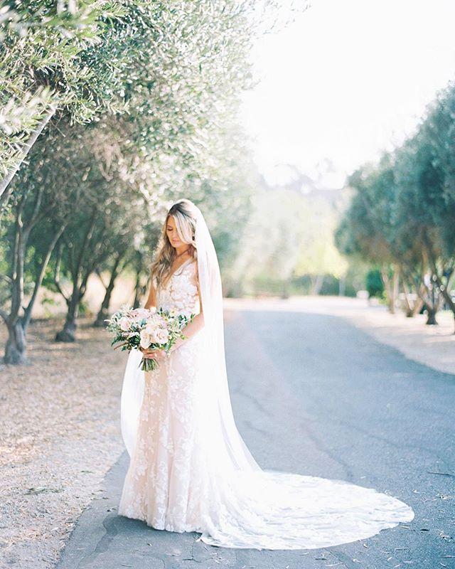 Isn't Jenna stunning in this @madewithlovebridal dress? ✨👰🏼 ... Photography- @mirellecarmichaelphoto Flowers - @aprilflowersslo  Hair & Makeup - @thequeensbees  Venue - @higueraranch ... #bridegoals #madewithlove #centralcoastwedding #weddingdress