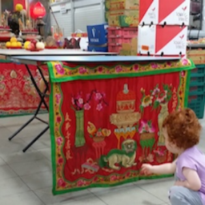 Curious red-head looks at  Paipai  joss table