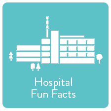 Hospital Fun Facts.jpg