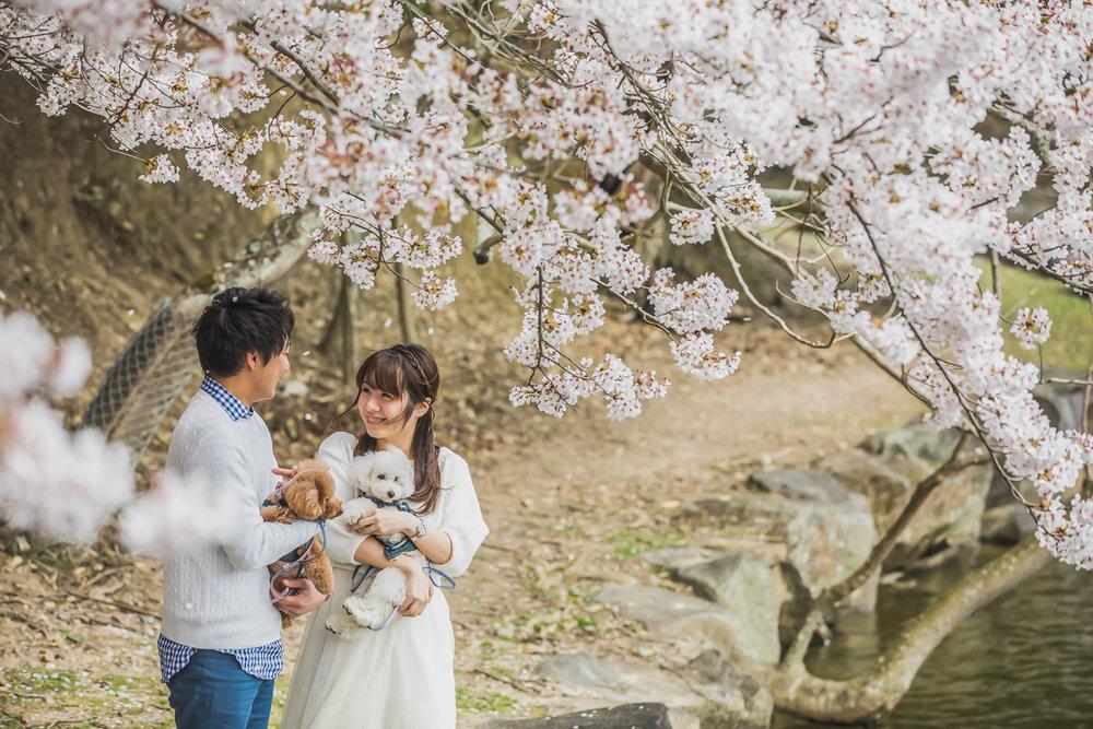 Mr+Ms.Kawata_014.jpg