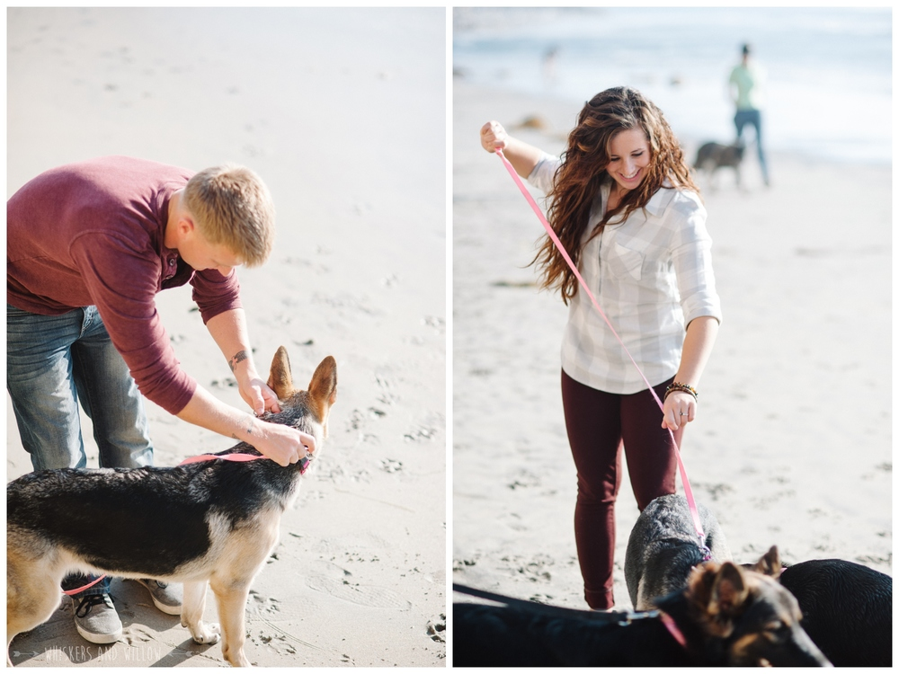 Del Mar Dog Beach Photo 032