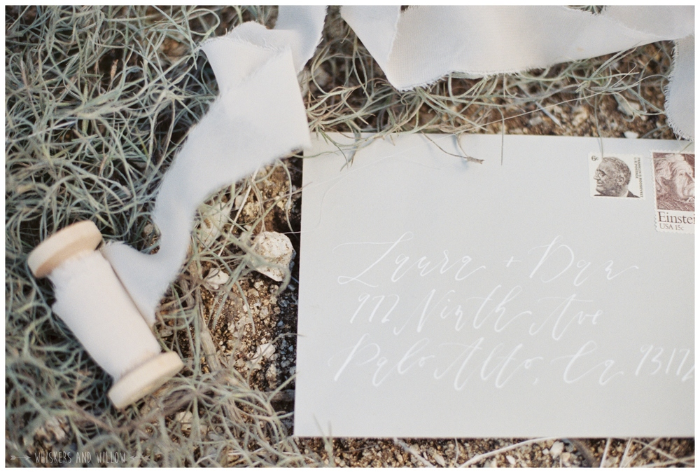 Neutral wedding invitation suite by Type and Title | Whiskers and Willow Photography