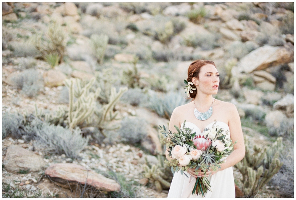 Pastel desert wedding | Bridal inspiration | Protea blush bouquet by Bloom Babes | Whiskers and Willow Photography