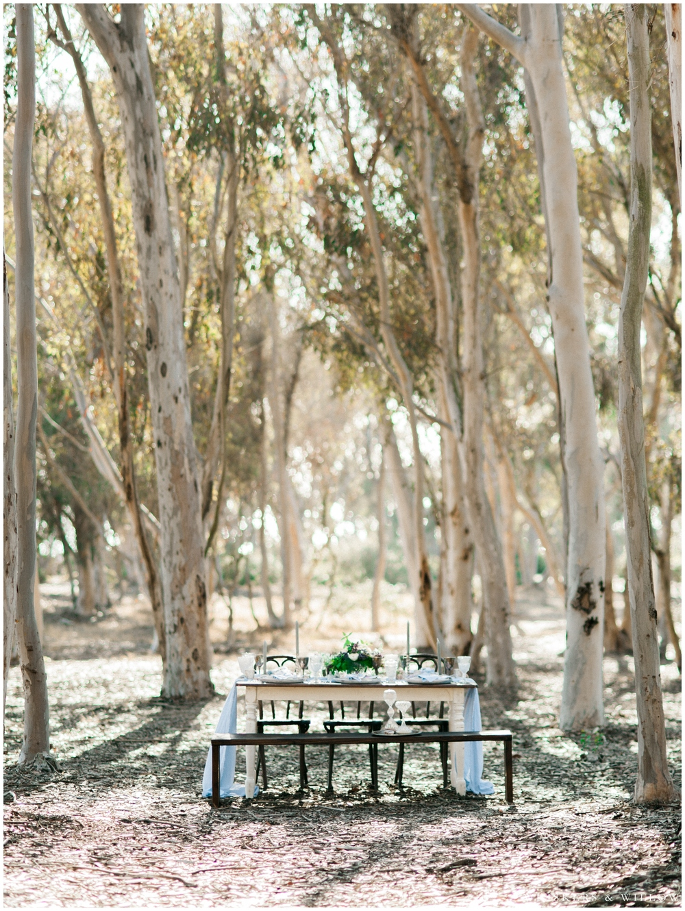 Bohemian elegant reception table - Eucalyptus grove - San Diego Wedding Photographer - Whiskers and Willow Photography