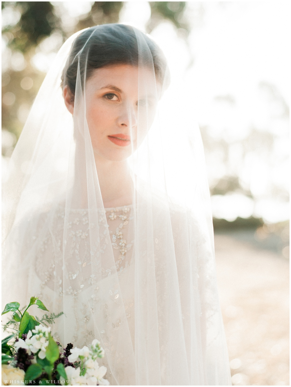Bridal Portrait - Jenny Packham gown - San Diego Wedding Photographer - Whiskers and Willow Photography