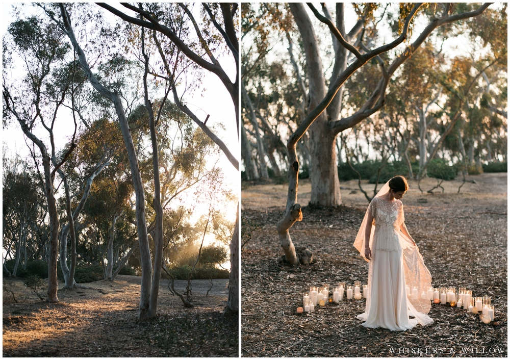 Moody Bridal Portrait - Jenny Packham gown - San Diego Wedding Photographer - Whiskers and Willow Photography