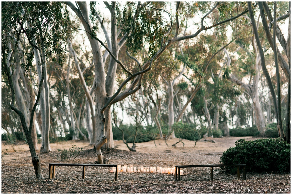 Eucalyptus grove ceremony site - Sweet Emilia Jane - San Diego Wedding Photographer - Whiskers and Willow Photography