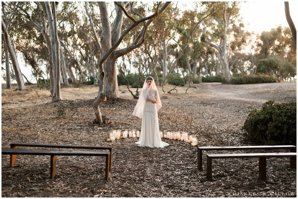 Eucalyptus grove ceremony site by Sweet Emilia Jane - Moody Bridal Portrait - Jenny Packham gown - San Diego Wedding Photographer - Whiskers and Willow Photography