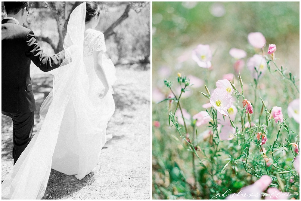 Classic bride and groom | Summer wedding | Film photographer | San Diego fine art wedding photography |Carmel Mountain Ranch Country Club Wedding | Whiskers and Willow Photography