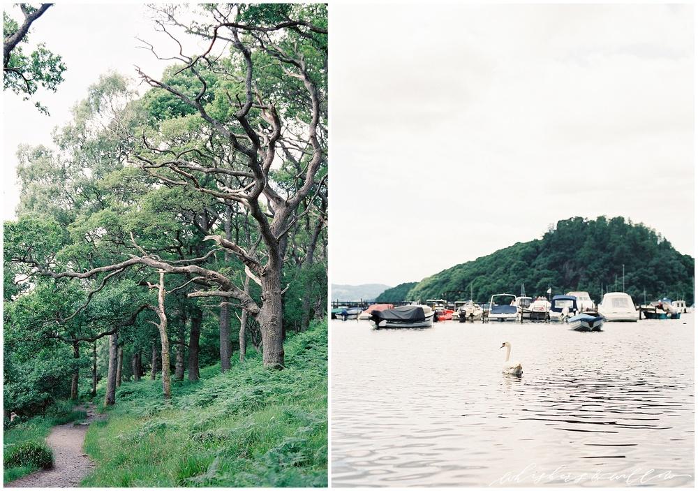 Entering the Loch Lomond shoreline