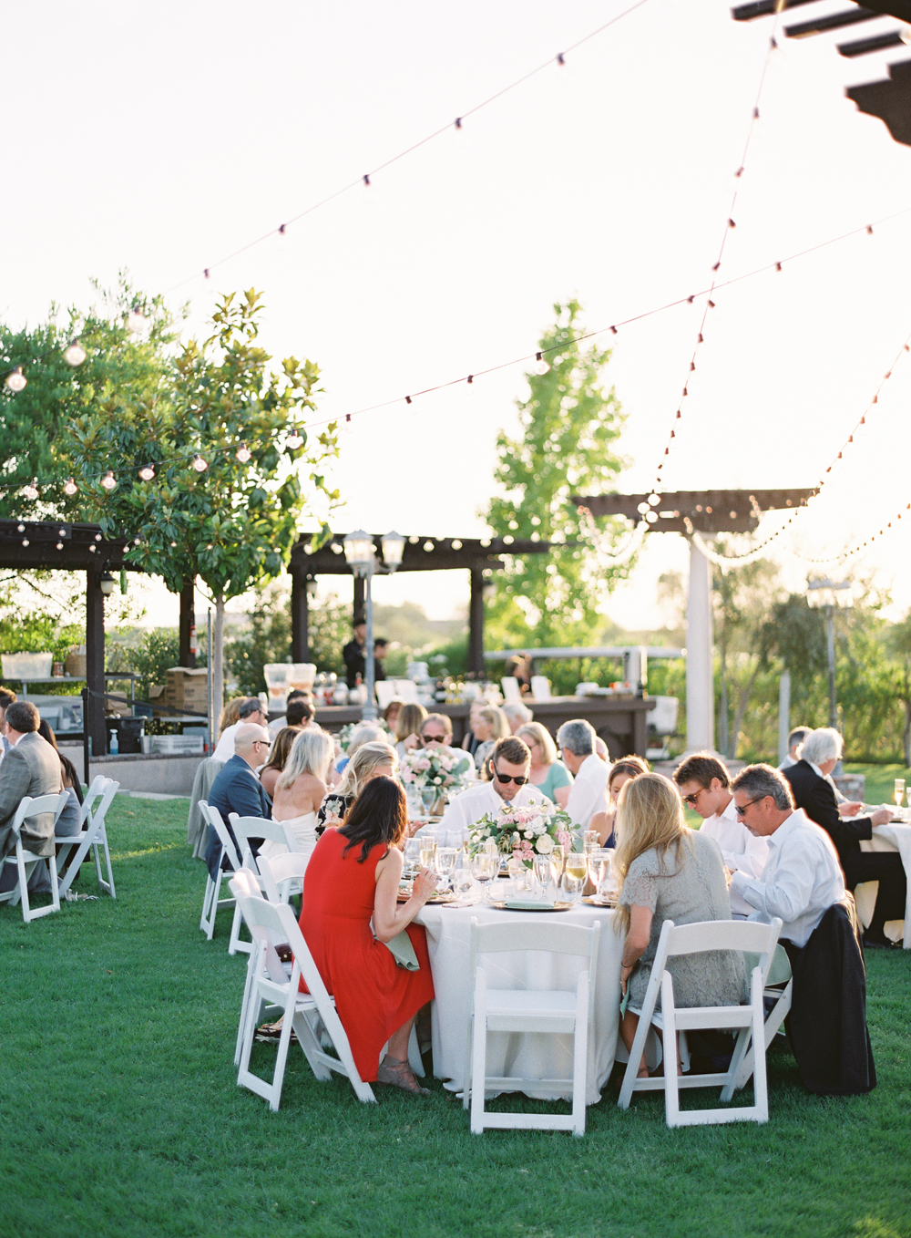Mount Palomar Winery Wedding | Blush and Lavender | San Diego wedding photographer | Temecula wedding photographer | Southern California film photographer | Whiskers and Willow Photography