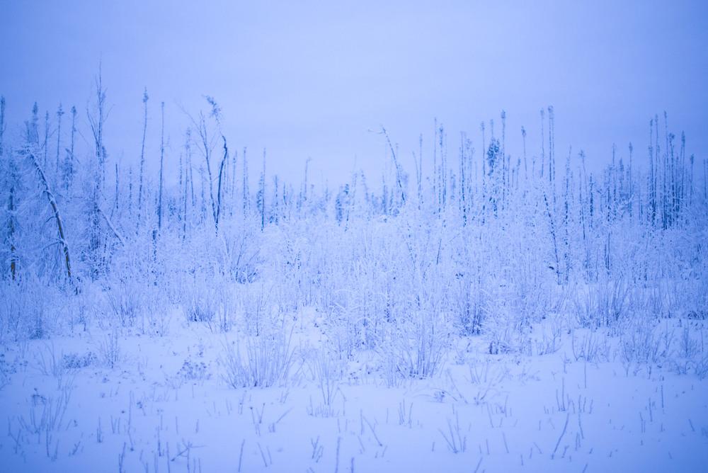 Alaska-53.jpg