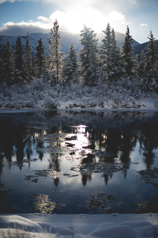 Alaska-54.jpg