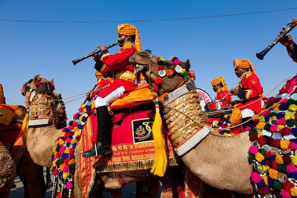 Desert Festival, India