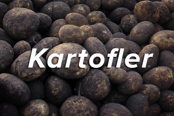 kartofler-thumb.jpg