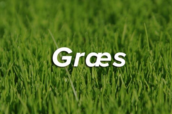 grass-thumb.jpg
