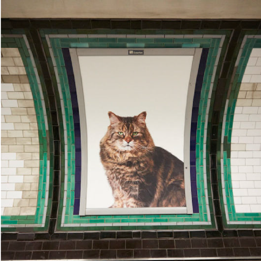 We went to Clapham Common tube station and things got really cute.