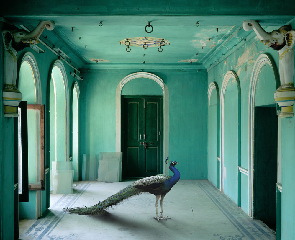 Photo: Karen Knorr