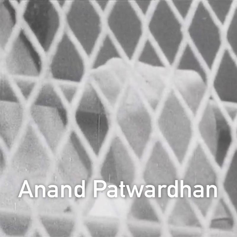 Anand Patwardhan.jpg