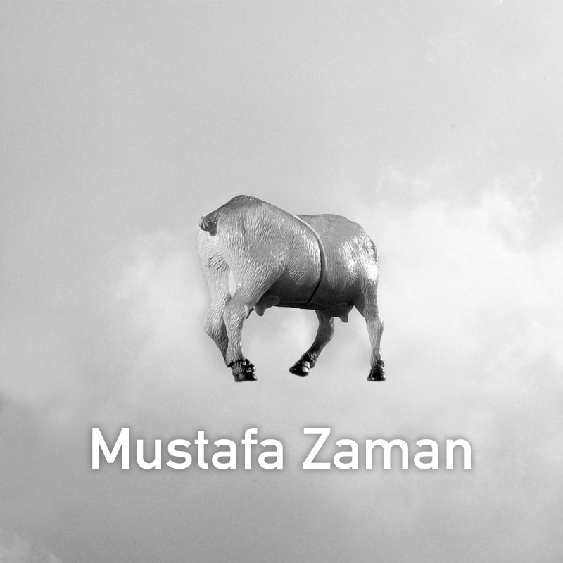 Mustafa Zaman.jpg