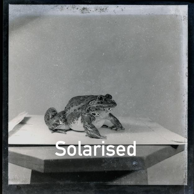 Solarized.jpg