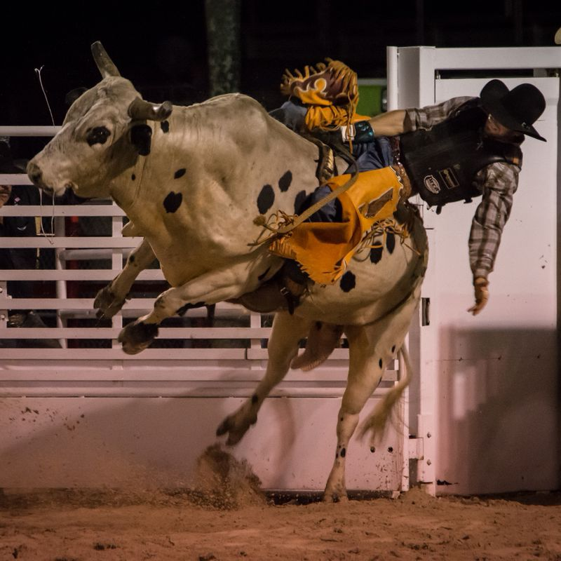 Homestead Rodeo-10.jpg