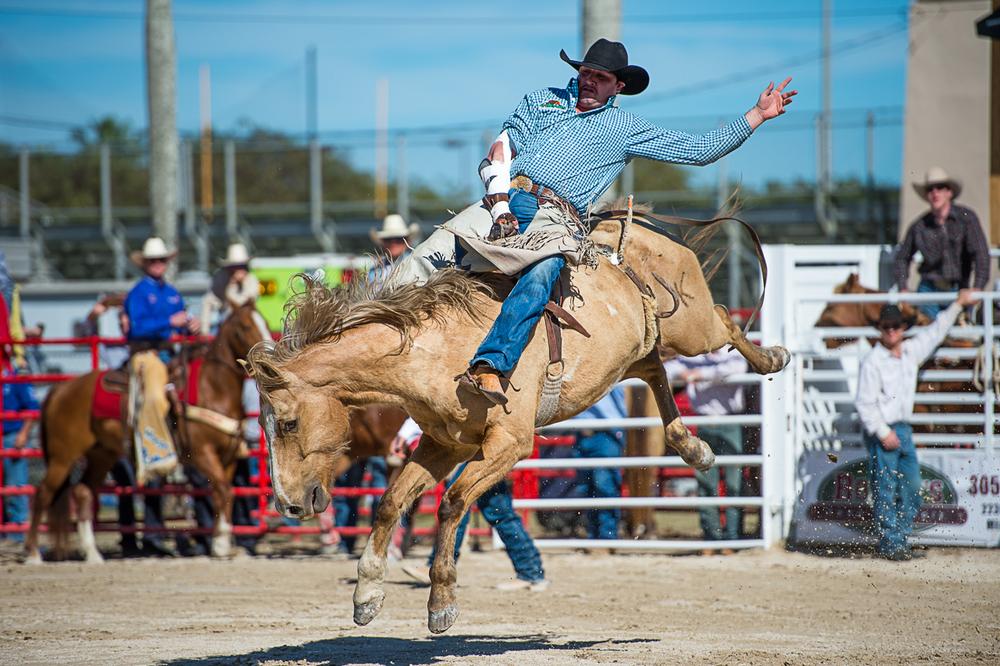 Rodeo-5.jpg