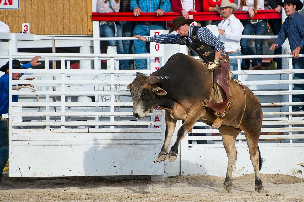 Rodeo-20.jpg
