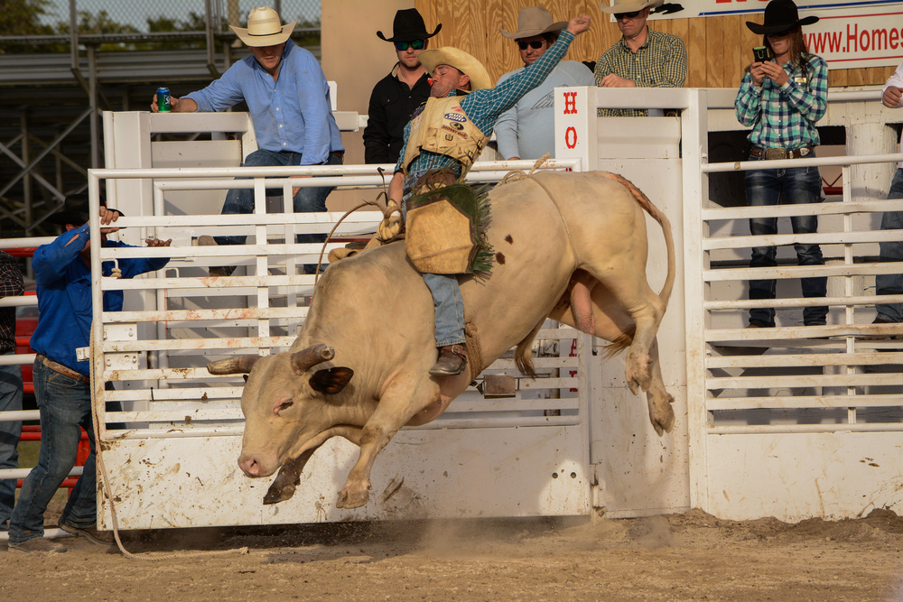 Homestead Rodeo-11 (1)-1.jpg