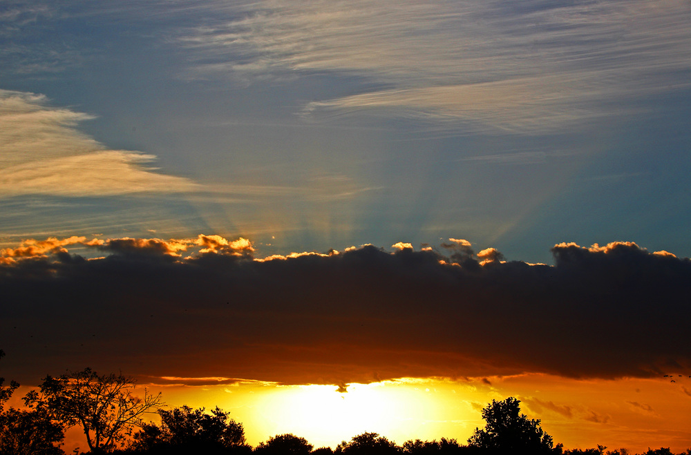 Shark Valley Sunrise 2.jpg