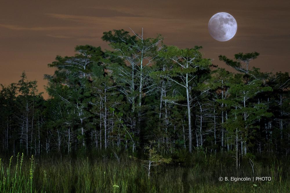 LunarEclipse150927-2.jpg