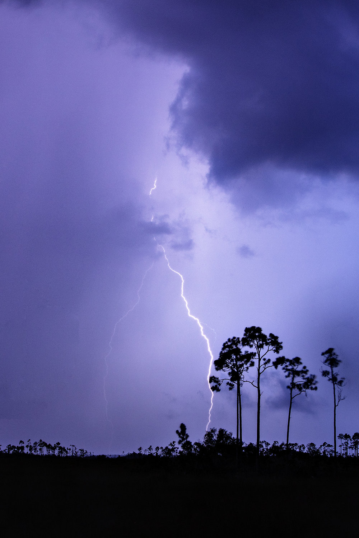 Mahogany Hammock Road Lightning 01.jpg